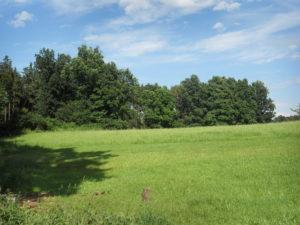 Prodej souboru pozemků určených pro výstavbu RD v celku, Tábor – Horky u Tábora