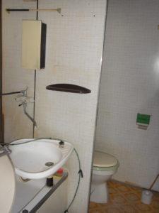 5_koupelna + WC